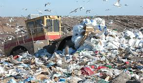 Image result for undivided garbage in sri lanka