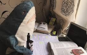 Как плюшевые <b>акулы</b> из Икеи стали звёздами инстаграма