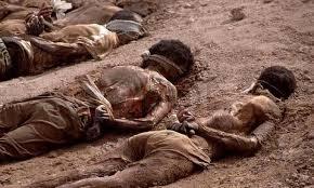 ماذا يحدث للمسلمين في جنوب افريقيا