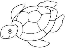 Small Picture Sea turtle coloring pages for preschooler ColoringStar