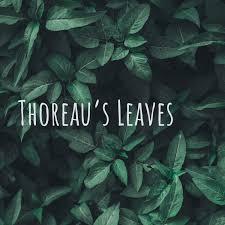 Thoreau's Leaves: the Thoreau podcast