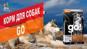 Корм для собак <b>GO NATURAL HOLISTIC</b> | Обзор корма для собак ...