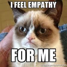 I feel empathy for me - Grumpy Cat | Meme Generator via Relatably.com