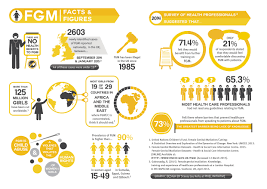 fgm facts and figures endfgm feminism sexism fgm facts and figures endfgm