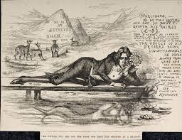max nordau a case study net cartoon of oscar wilde as narcissus wearing the flower of notoriety by thomas nast from