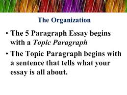 Help writing essay paper   Choose Expert Writing Help Aliza February          help writing essay paper jpg