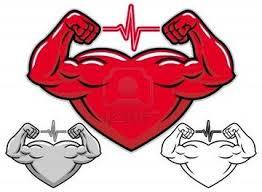 Αποτέλεσμα εικόνας για καρδιαγγειακό σύστημα