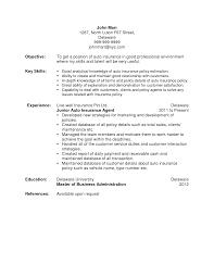 Insurance Sales Resume Sample Insurance Sales Agent CV Template CV