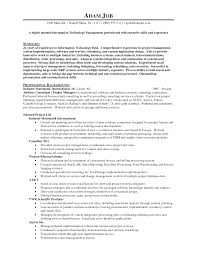 resume format for s executive s and marketing manager resume s executive resume sample resume templates s executive resume s executive resume sample s manager