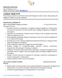 Example Resume  Write A Resume Objective  work experience for     happytom co objective for accounting resume   resume objective engineering