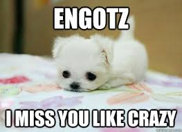 Engotz i Miss you like crazy - I Miss You - quickmeme via Relatably.com
