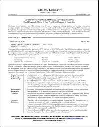 purpose example cfo resume written for a senior executive seeking a position as cfo sample resume executive