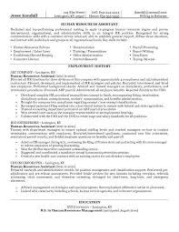 hr manager resume objective   resume sample usajobs govhr manager resume objective hr manager resume sample three hr resume our  top pick for