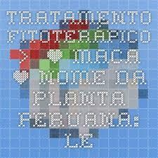 Resultado de imagem para IMAGENS DE RECEITAS COM LEPIDIUM MEYENII