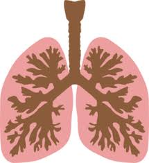 Lung Infections Going Around