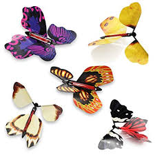 heytech <b>Magic Flying Butterfly</b> Great <b>Surprise</b> Gift(5 Packs): Amazon ...