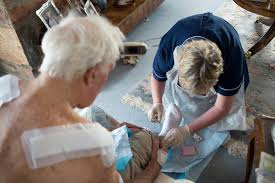 wound care a tool to assist home health nurses in wound  care in local communities a new vision and model for district nursing
