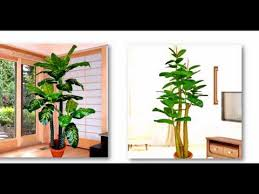 office decoration flowers and plants in singapore artificial plants for office decor
