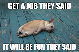 get a job they said it will be fun they said - wornout dog - quickmeme via Relatably.com