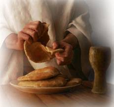 Image result for To the newly baptised on the eucharist