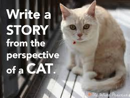cat essay writer  do my homework sites admission essay sample