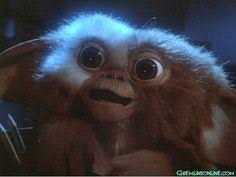 Quote of the Day: Gremlins | Gremlins, Gremlins Gizmo and The Rules via Relatably.com