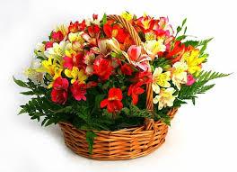 """Результат пошуку зображень за запитом """"букет квітів"""""""