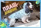 Дождевик для собак выкройки