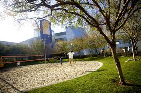 googles organizational culture allows there to be volleyball time atmosphere google office