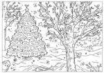 Раскраска елочки в лесу