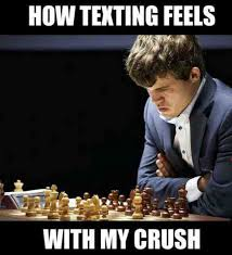 How Texting Feels With My Crush | WeKnowMemes via Relatably.com