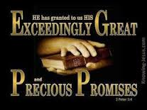 Image result for 2 peter 1:2~4