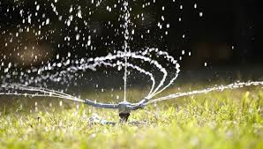 Watering Tips for Your <b>Lawn</b> and Garden