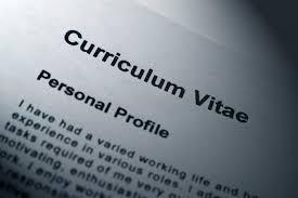 Technical Architect CV Example