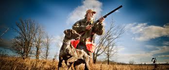 Professional Hunting Dog Training In Minnesota