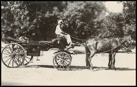 Image result for horse carriage of bombay 1900