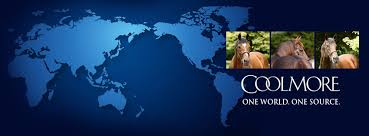 Image result for coolmore logo