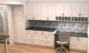 Kitchen Pantry Cabinet Ikea Ikea Kitchen Pantry Designing Gallery A1houstoncom