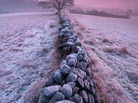 <b>Stone</b> & <b>Rock Walls</b>