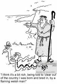Image result for st patrick banishes snakes from ireland
