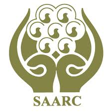 short essay on role of in saarc