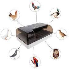 Купите chicken <b>egg incubator</b> eu онлайн в приложении AliExpress ...