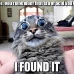 Acid Cat | Funny As Duck | Funny Pictures via Relatably.com