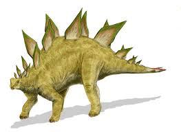 <b>Stegosaurus</b> - Vicipaedia