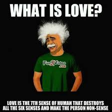 Love Definition Funny Meme To Tell You What is Love Which Smile You via Relatably.com