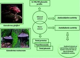 Antidiabetic effect of <b>two</b> different <b>Ganoderma</b> species tested in ...