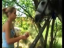 Most Relevant Videos - Real Horse Cum - Adult Script Pro 3