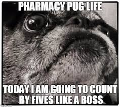 Pharmacy Pug Deep Thoughts - Imgflip via Relatably.com