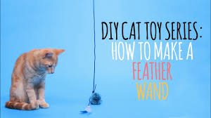 DIY Cat <b>Toys</b> - How to Make a <b>Feather Wand</b> - YouTube