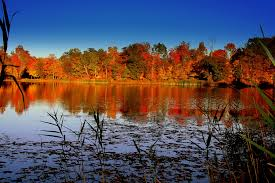 Image result for catskills in fall